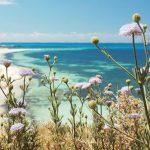 パース 春のお花見情報