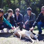 第15回 カバシャムでオーストラリアの動物とふれあおう!