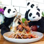 第24回 Panda & Co