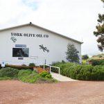 パース日帰り旅行特集 The York Olive Oil Company (ザ•ヨーク•オリーブオイル•カンパニー)
